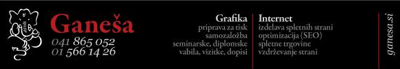 Izdelava spletnih strani ganesa.si